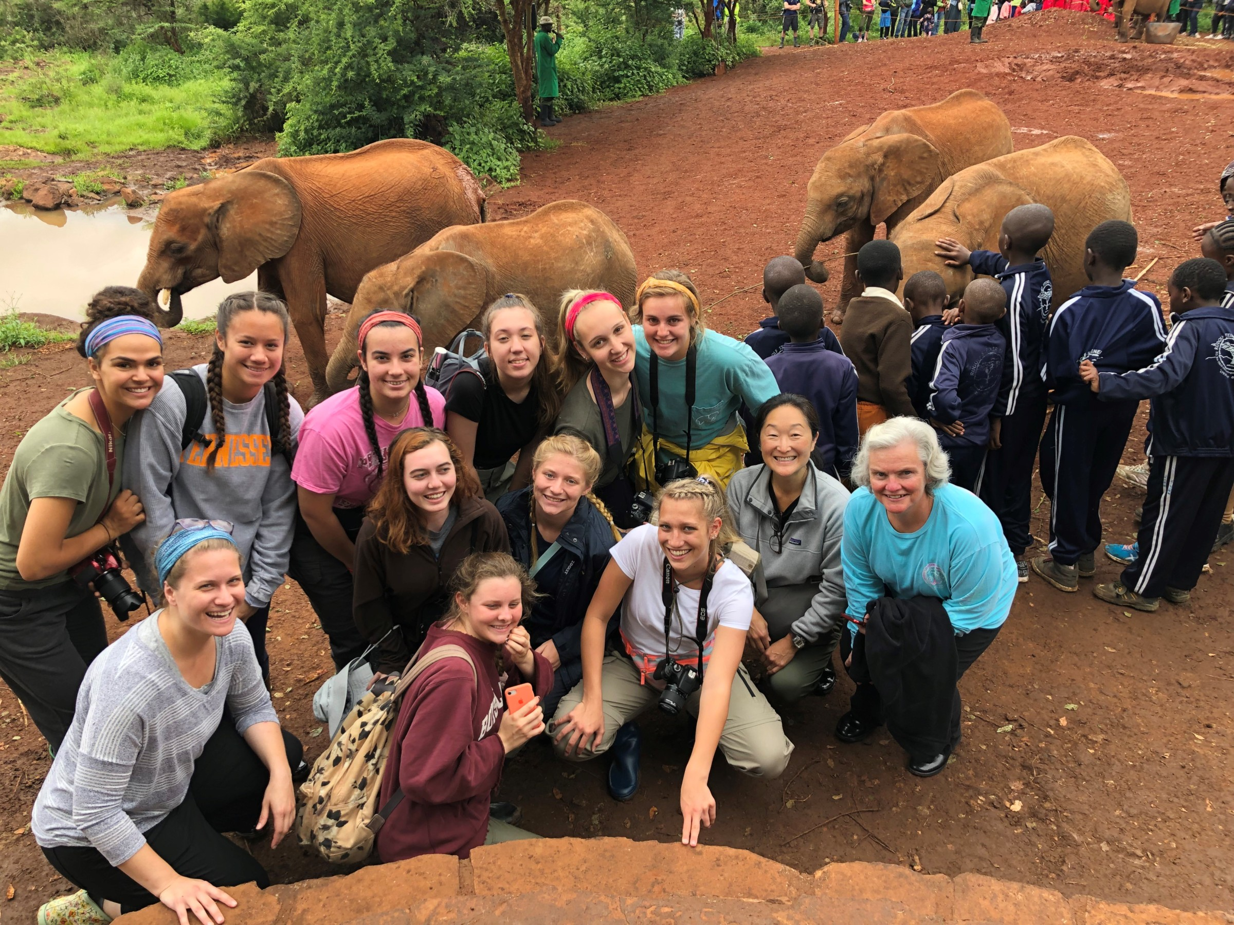 Chronicles of Mrs. Cory: Visiting an Elephant Sanctuary