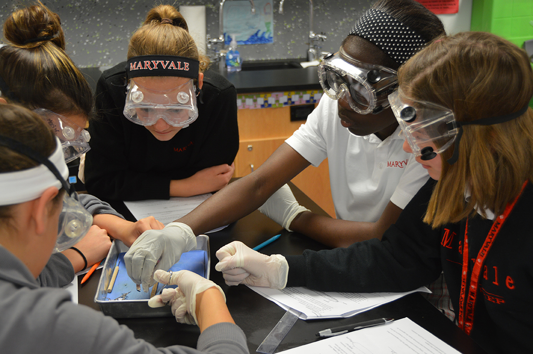 Maryvale Middle School Science